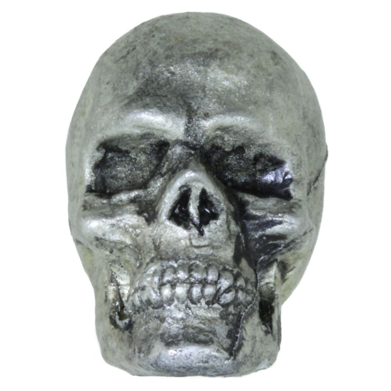 Anatomical Skull in Pewter by Barrett Designs