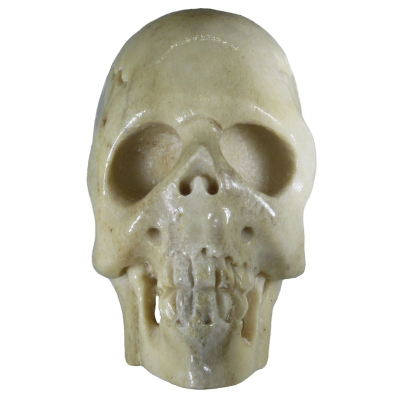 "1 1/8"" Deer Antler Long Face Skull (Hand Carved)"