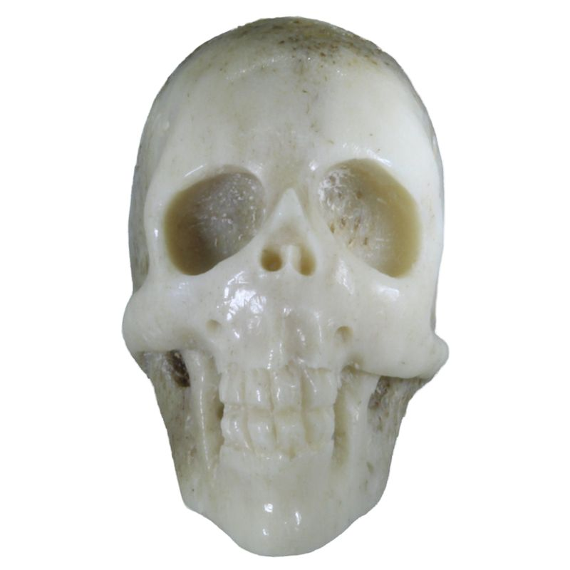 "1"" Deer Antler Long Face Skull (Hand Carved)"